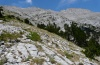 Hadena vulcanica: Habitat on Olympus in 2000-2300m above sea, August 2012. [N]
